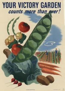 Victory-garden